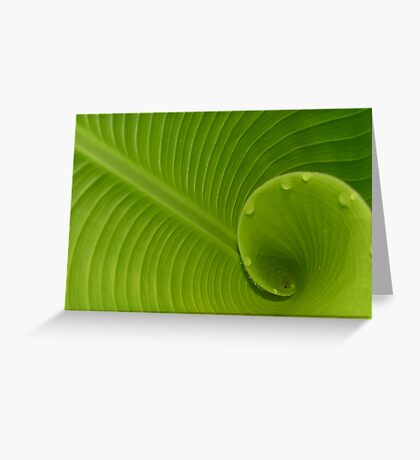 Spicy Green Greeting Card
