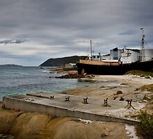 Cheynes IV at Whaleworld Albany, WA by Briarah1969