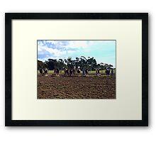 Working Horse Parade, Churchill Island, Easter 2010 Framed Print
