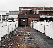 Alley by Eric Scott Birdwhistell