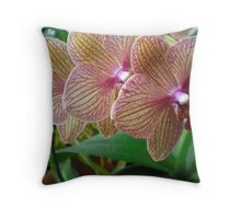 Four flowers of life Throw Pillow