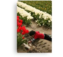 Best Part of the Tulip Field is the Puddle Canvas Print