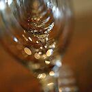 The Glass Within by Panteli Pyromallis
