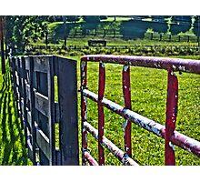 Farm Gate Photographic Print