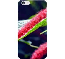 Red Cat Tail Plant iPhone Case/Skin