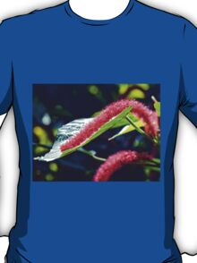 Red Cat Tail Plant T-Shirt