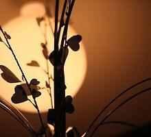 The light of love by samihatch