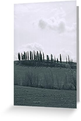 Tuscan Landscape with Trees and Road by Jon Julian