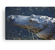 Alligator Head Canvas Print
