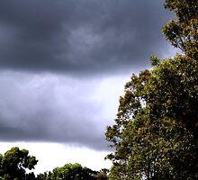 Weather Patterns by samihatch