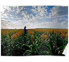 Surveying the crop Poster
