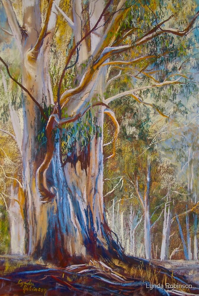 Majestic Redgum by Lynda Robinson