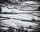 Rural glamour in winter by clickinhistory
