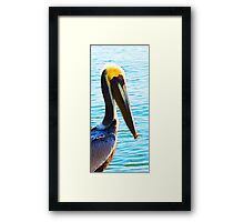 Big Bill - Pelican Art By Sharon Cummings Framed Print
