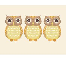 Friendly Owl Trio Photographic Print