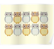 Owl Collection Poster