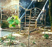 Nunnery Ruin 3 by IngridSonja