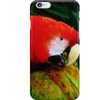 Parrot #1 iPhone Case/Skin