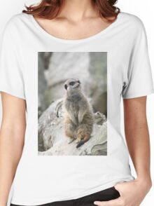 Mr Inquisitive Women's Relaxed Fit T-Shirt