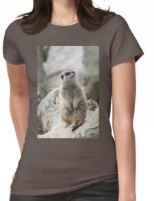 Mr Inquisitive Womens Fitted T-Shirt