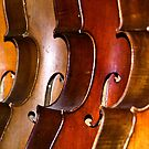'cello lineup! by Fineli