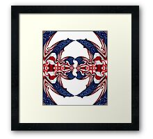 American Flag Polar Coordinate Abstract 1 Framed Print