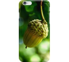 From little acorns grow mighty oaks iPhone Case/Skin