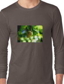 From little acorns grow mighty oaks Long Sleeve T-Shirt