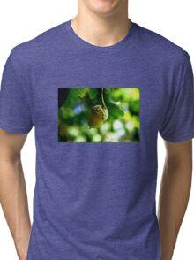 From little acorns grow mighty oaks Tri-blend T-Shirt