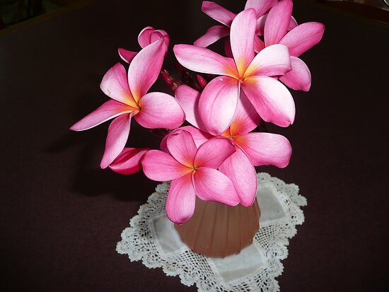 Hot Pink Frangipanis. by Mywildscapepics