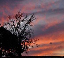 A fiery sunset by Zac Ellis