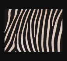 T Shirt Zebra Pattern by Linda More