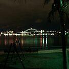 sydney at night by Nenad  Njegovan