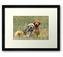 Kate and Sam - In the Meadow Framed Print