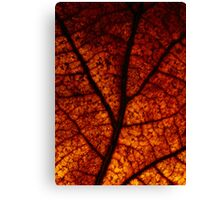 Forest Flame Canvas Print