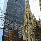 St Patrick's Cathedral, 5th Ave by Debbie Ashe
