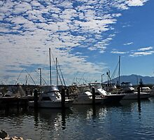 Bermagui Habour by Evita