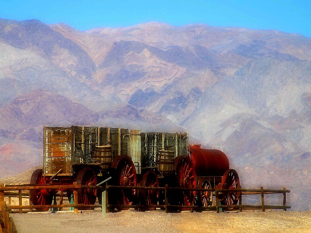MULE TRAIN ~ DEATH VALLEY by Tammera