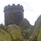 Hidden Castle by walkinthepark