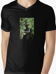 Rural Mailbox Mens V-Neck T-Shirt