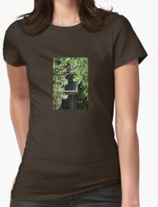Rural Mailbox Womens Fitted T-Shirt
