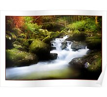 Fall Steps - Autumn on the River Aber Poster