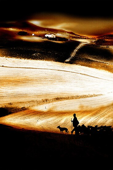 The Road Home - a Goatherder in Andalucia by Mal Bray