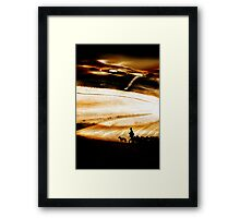 The Road Home - a Goatherder in Andalucia Framed Print