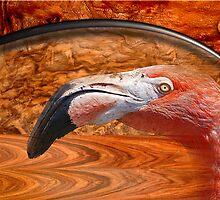 flamingo by arteology