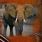 elephant by arteology