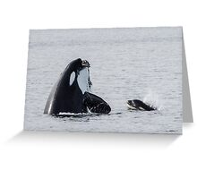 Teaching Your Baby to Hunt! Greeting Card