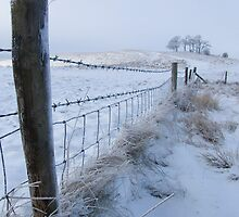 Cherhill In the Snow by Sandra Mangnall