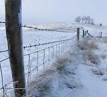 Cherhill In the Snow by Sandra Mangnall