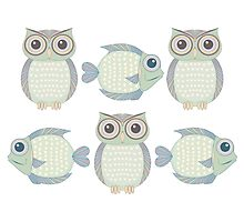 Three Cool Fish and Three Cool Owls Photographic Print